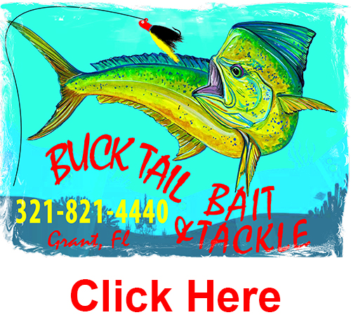 Buck Tail Bait & Tackle Weekly Fishing Report