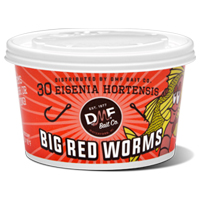 DMF Live Red Worms BuckTail Bait & Tackle